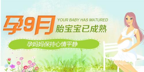 【怀孕9个月】孕前期注意事项_怀孕九个月产检